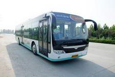 11.5米|73座中大纯电动城市客车(YCK6118BEVC)