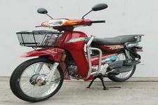 金山牌JS100-21S型两轮摩托车图片