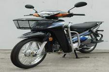 金山牌JS100-6S型两轮摩托车图片