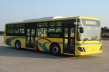 10.5米|24-46座象豪华城市客车(SXC6105G3A)