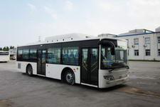 10.5米|10-40座东宇城市客车(NJL6109GN)