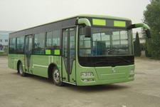 10.6米|22-39座扬子城市客车(YZK6110CNG4)
