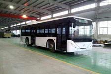 10.5米|18-37座北方城市客车(BFC6100NG)