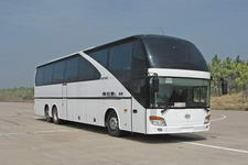 安凯牌HFF6141K07D-1型特大型豪华客车图片