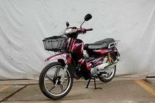 天禧牌TX110-2型两轮摩托车图片