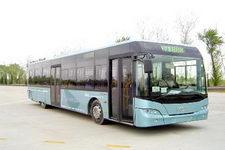12米|30-41座青年豪华城市客车(JNP6120G)