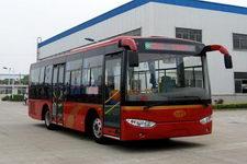 8.5米|10-36座常隆城市客车(YS6850G)