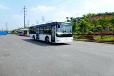10.5米|24-40座南车时代城市客车(TEG6106NG03)