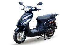 大阳牌DY48QT-2D型两轮轻便摩托车图片