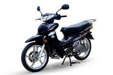 大阳牌DY48Q-2D型两轮轻便摩托车图片