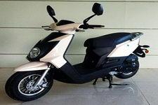 中能牌ZN50QT-11D型两轮轻便摩托车图片