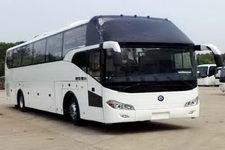 楚风牌HQG6122CA5N型旅游客车图片