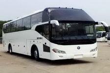 楚风牌HQG6122CL5N型旅游客车图片