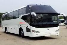 楚风牌HQG6121CL4N型旅游客车图片