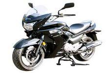 铃木(SUZUKI)牌GW250F型两轮摩托车图片
