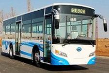 10.6米|25-37座佰斯威城市客车(WK6110URD1)