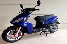 中能牌ZN50QT-50型两轮轻便摩托车图片