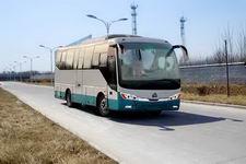 8米|24-33座黄河客车(JK6808HAD)