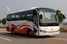 8.5米|24-39座桂林客车(GL6850CH)