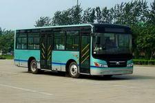8.5米|10-33座西域城市客车(XJ6859GC)