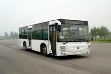 10.5米|24-37座福田混合动力城市客车(BJ6105PHEVCA-1)