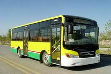 8.5米|10-33座西域城市客车(XJ6859GC5)