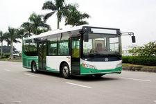 9.3米|24-34座飞驰城市客车(FSQ6933JNG)