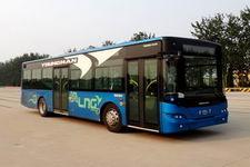 青年牌JNP6100GM型豪华城市客车图片