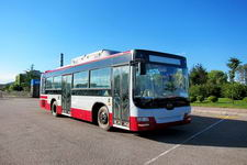 10.5米|24-36座黄海混合动力城市客车(DD6109CHEV1)