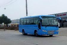 大力牌DLQ6900EA4型客车图片