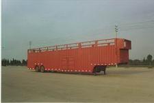 扬子牌YZK9141TCL型车辆运输半挂车图片