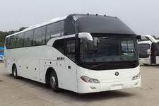 楚风牌HQG6122CA4型旅游客车图片2