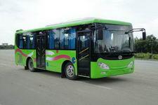 8.1米|10-28座飞驰城市客车(FSQ6810JCG)