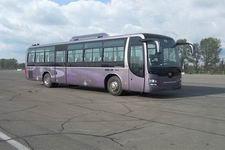 11.9米|24-62座黄海客车(DD6129K65)