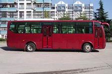 大力牌DLQ6750EA3型客车图片4