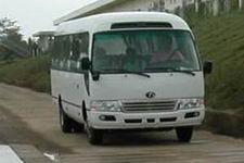 大力牌DLQ6700C1型客车图片