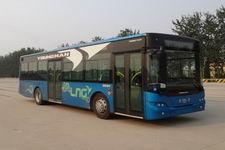 10.5米|10-40座青年豪华城市客车(JNP6100GM)