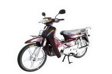 力阳牌LY110-11型两轮摩托车图片