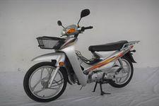 大福牌DF110-2G型两轮摩托车图片