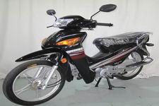 新本牌XB110型两轮摩托车图片