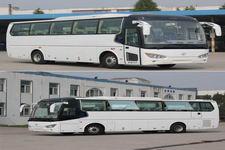 开沃牌NJL6117BEV12型纯电动客车图片2