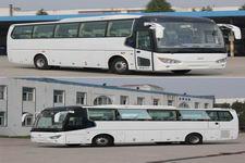 开沃牌NJL6117BEV16型纯电动客车图片2