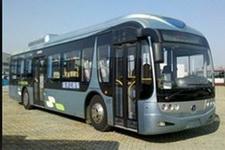 12米|29-46座扬子江城市客车(WG6120NHA4)