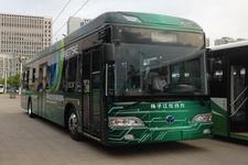 扬子江牌WG6124BEVH型纯电动城市客车图片3