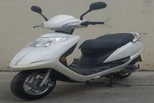 天鹰牌TY100T-2型两轮摩托车图片