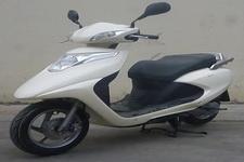天鹰牌TY110T型两轮摩托车图片