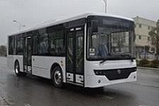 10.5米|10-33座爱维客纯电动城市客车(QTK6105BEVG1G)