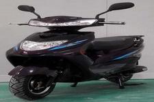 三雅牌SY1200DT-8型电动两轮摩托车