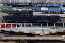 飞碟牌FD1046W10K型载货汽车图片