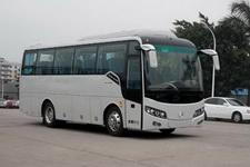 8.5米金旅客车